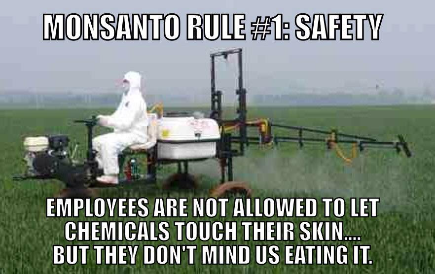 Monsanto Safety Rule « The Daily Blog