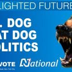 national blighted hoarding 8
