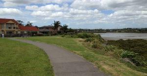 The alcove: WattleDowns, land-locked to Manurewa but  connected by tide to Judith Collins' Papakura electorate.