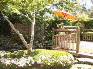 Fukuoka auckland gardens 2