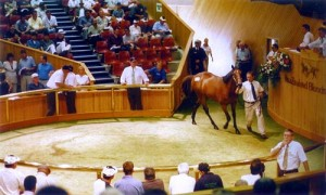 Horse trading.