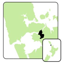 Manukau_east_electorate_2008