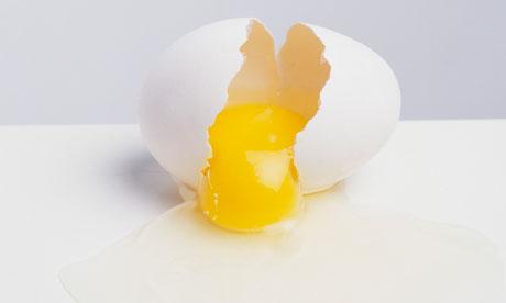 egg-yolk-006