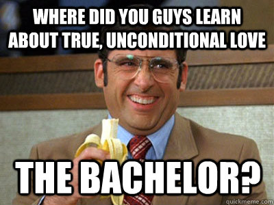 ef625d2f3d782c31001ed631d40360d54708b121cffcb98bf1b667b2cd6e9d13 tv review if you write tv reviews about the bachelor that don't