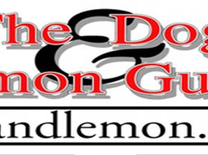 dog and lemon guide the daily blog rh thedailyblog co nz dog and lemon guide download dog and lemon guide download