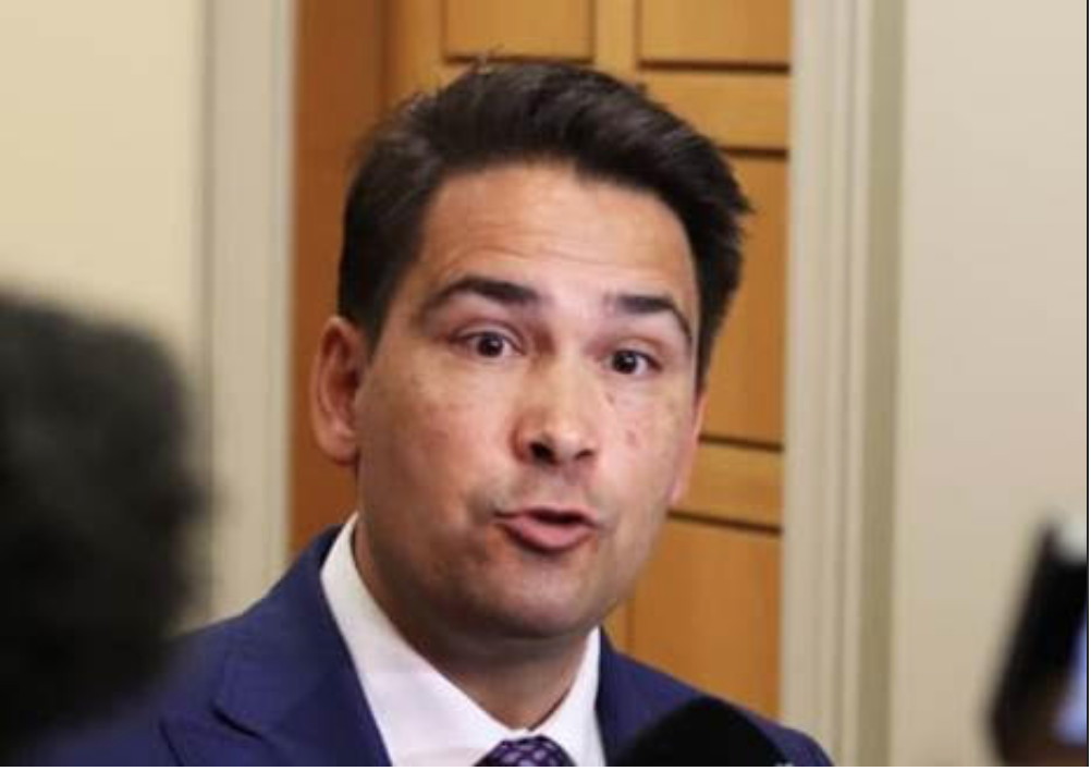Image result for simon bridges