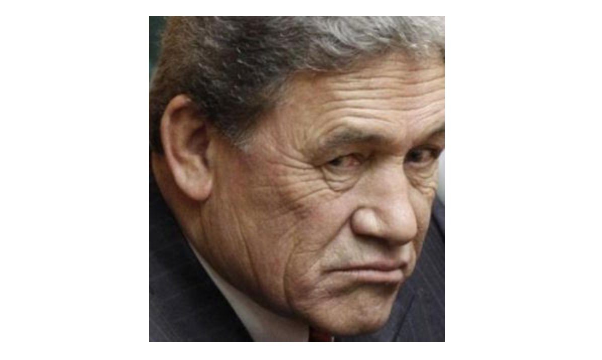 Hiding He Puapua From Winston May Cost Labour Dearly. | The Daily Blog